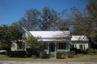 479 Green Street, Ulmer, SC 29849 - #: 18028259