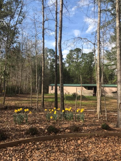 14658 Bells Highway, Lodge, SC 29082 - #: 18028722