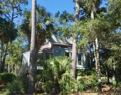 405 Sea Cloud Circle, Edisto Island, SC 29438 - #: 18030319