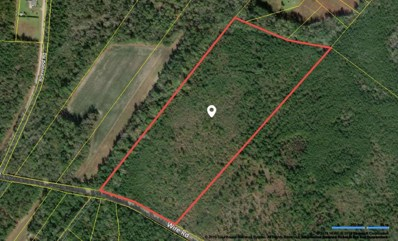 Wire Road, Branchville, SC 29432 - #: 19000731