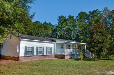 1130 French Santee Road, Jamestown, SC 29453 - #: 19033772