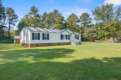 4223 N Highway UNIT 17a, Jamestown, SC 29453 - #: 20019537