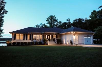 265 Lakeview Lane, Hampton, SC 29924 - #: 20020654