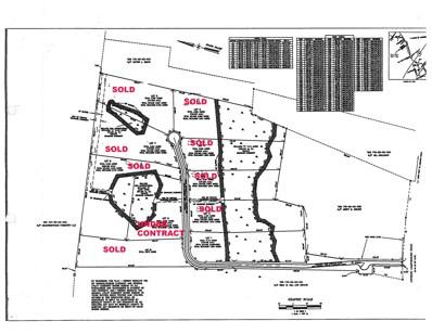 153 Ryefield Lane, Ridgeville, SC 29472 - #: 20021549