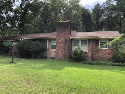 24917 Lowcountry, Ruffin, SC 29475 - #: 20021559