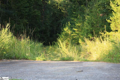 1745 S Saluda Road, Cleveland, SC 29635 - #: 1350813