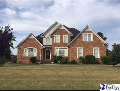 2603 Harleston Green Dr, Florence, SC 29505 - #: 134293