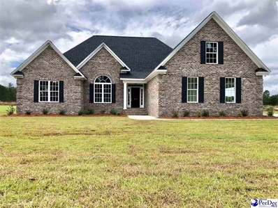 2513 Harleston Green Drive, Florence, SC 29505 - #: 136636