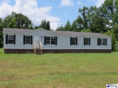834 Bassett Drive, Hartsville, SC 29550 - #: 137436