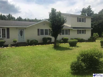 353 Peter, Lake City, SC 29560 - #: 137805