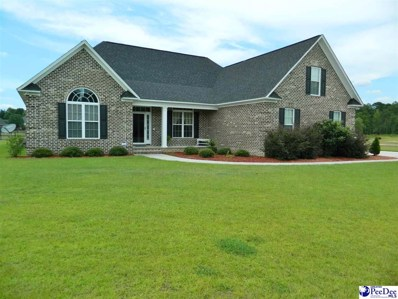 3333 Shadow Creek Dr., Florence, SC 29505 - #: 137842