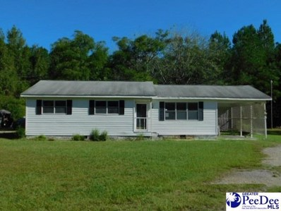 2329 E Lynches River Rd, Timmonsville, SC 29161 - #: 138578