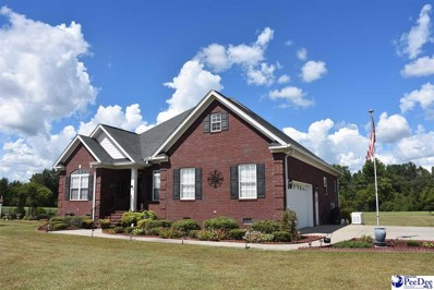 915 Half Mile Lane, Timmonsville, SC 29161 - #: 138793