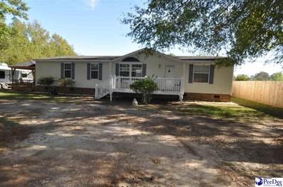 620 Salem Road, Bennettsville, SC 29512 - #: 138925