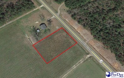 Tbd S Pamplico Hwy, Pamplico, SC 29583 - #: 139576