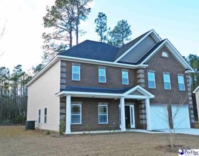 1059 Took Place, Florence, SC 29505 - #: 20192093