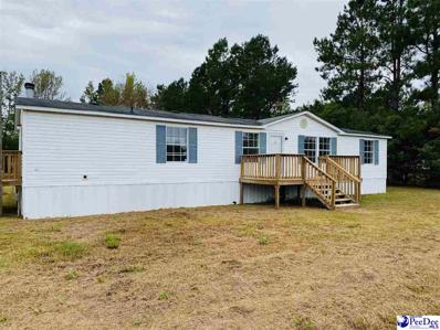 1122 River Rd, Pamplico, SC 29583 - #: 20193740