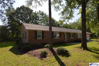 1801 Garland Drive, Hartsville, SC 29550 - #: 20201686