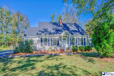 325 Green Acres Rd, Florence, SC 29505 - #: 20203453