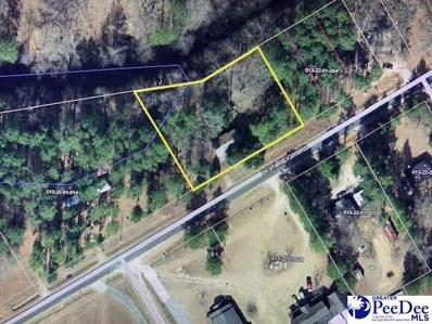 4161 Delta Heights Rd, Wallace, SC 29596 - #: 20203638