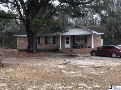 4234 Plymouth Street, Wallace, SC 29596 - #: 20210316
