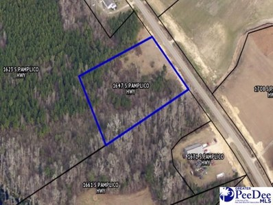 1647 S Pamplico Hwy, Pamplico, SC 29583 - #: 20210647
