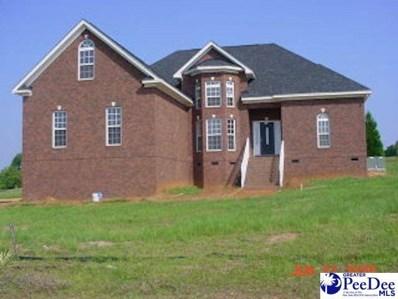 1840 Moorhill Estates Drive, Sumter, SC 29154 - #: 20212630