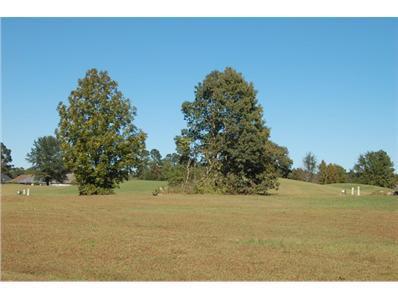 36 North Lake Cr. (R-3), Manning, SC 29102 - #: 134338