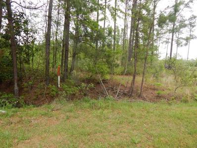 115 Sav Will Acres Road, Orangeburg, SC 29115 - #: 137419