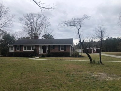 1395 Home Branch Road, Manning, SC 29102 - #: 143574