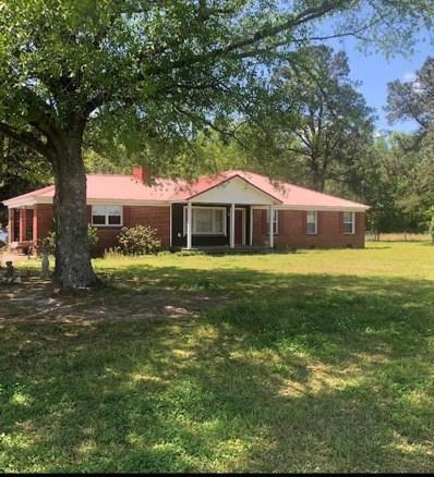 9680 Douglas Swamp Rd, Lynchburg, SC 29080 - #: 143875