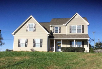 14 Rayland Place, Greer, SC 29651 - #: 256314