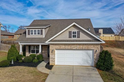 349 Archway Court, Moore, SC 29369 - #: 257421