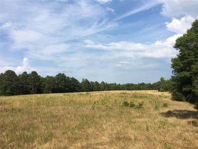 891 Mitchell Place, Lowndesville, SC 29659 - #: 20219018