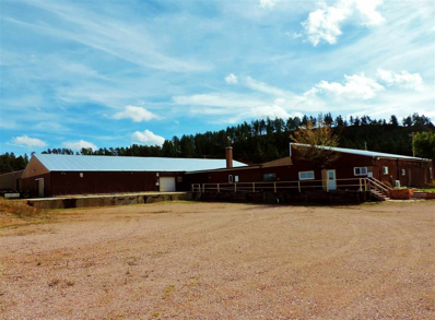 27024 Highway 385, Hot Springs, SD 57747 - #: 60219