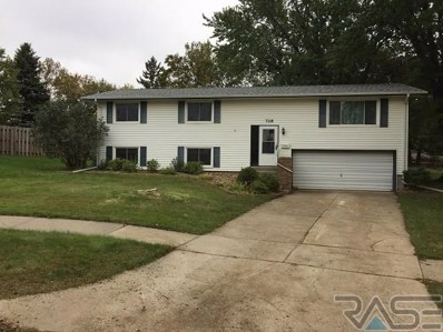 728 NE 7th St, Madison, SD 57042 - #: 21804638