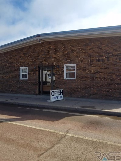 220 N Nebraska St, Salem, SD 57058 - #: 21901557