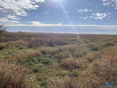 County 117 Rd, Worthing, SD 57077 - #: 22006468