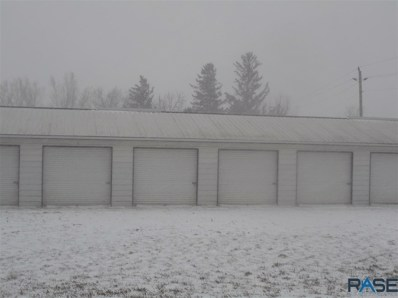 300 W 1st St, Alcester, SD 57001 - #: 22007427