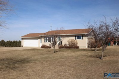 45080 233rd St Street, Madison, SD 57042 - #: 22100622