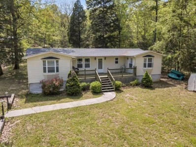577 Lakeview Dr, Spring City, TN 37381 - #: 1281042