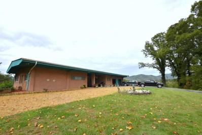 225 Cherokee Tr, Copperhill, TN 37317 - #: 1289568