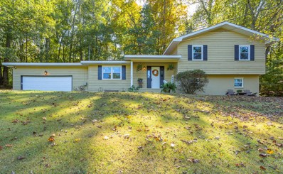 385 Indian Mound Rd, Ringgold, GA 30736 - #: 1307306