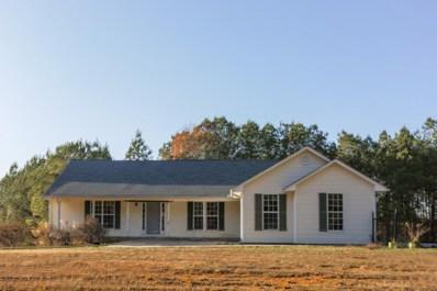 3037 NE Mount Pleasant Rd, Dalton, GA 30721 - #: 1312101