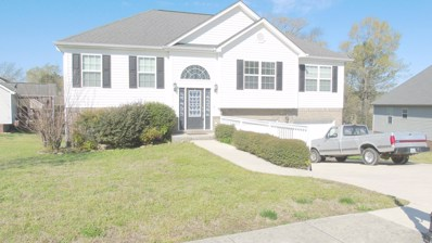 15 Carrigan Cir, Ringgold, GA 30736 - #: 1312879
