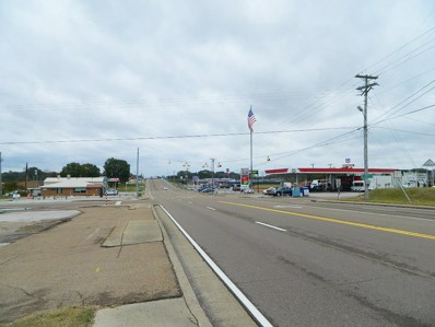 21540 Highway 22 North, Parkers Crossroads\/Wildersvil>, TN 38388 - #: 180295