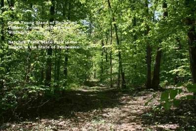 000 Fiddler Trail, Wildersville, TN 38388 - #: 183152
