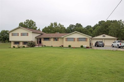 495 State Route 77, Atwood, TN 38220 - #: 184814