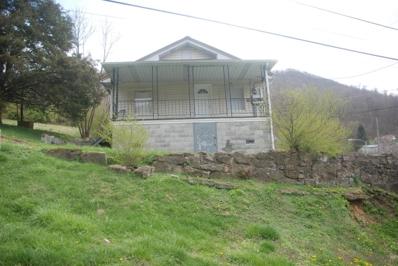 100 Ann St, Pineville, KY 40977 - #: 1035951