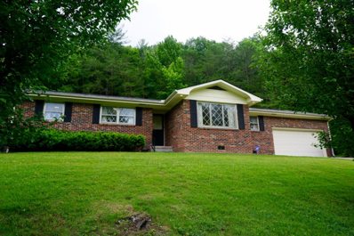 330 Old Clear Branch Lane, Rocky Top, TN 37769 - #: 1043936
